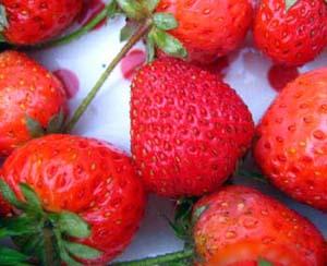 Berries from Heaven